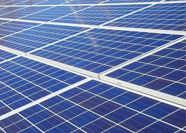 戸建を建てるときは太陽光パネルの設置を検討したいとおもいますか?