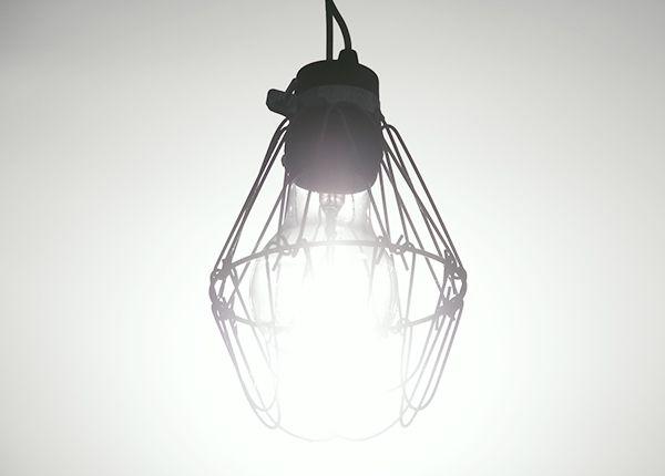 LED電球を使っていますか?