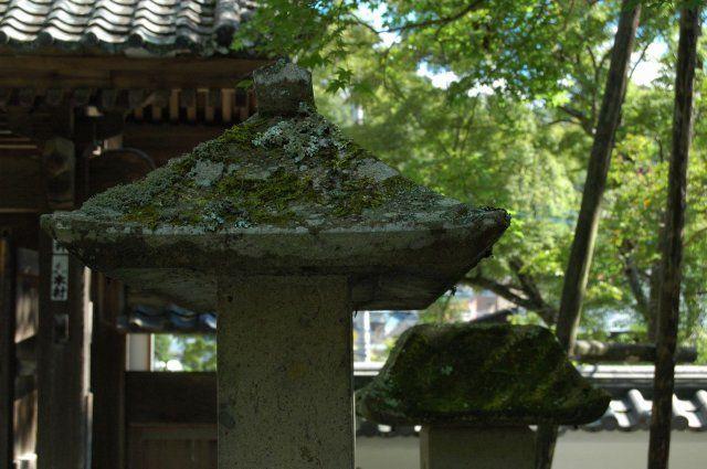 温泉の名地・伊豆は、住み良さそうな街