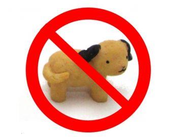 ペット禁止可の賃貸