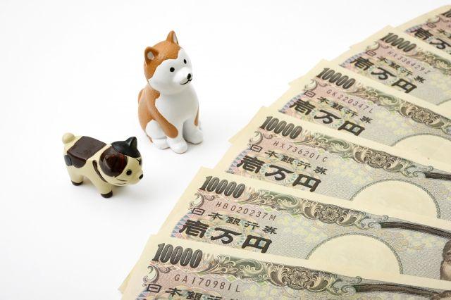 ペット保険の費用