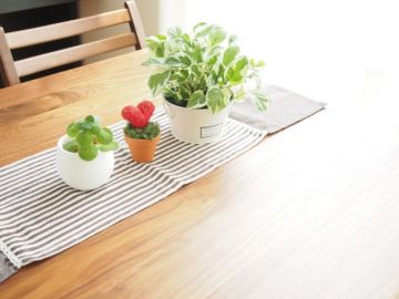 観葉植物のテーブルコーディネート