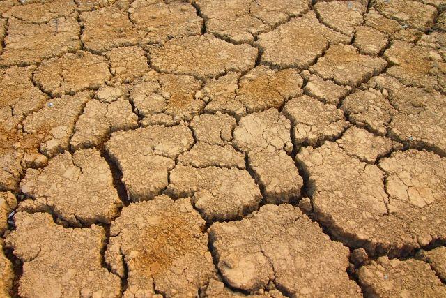 乾燥によって起こるリスクとは