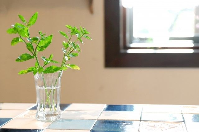 造花やフェイクグリーンを使ったアイディア