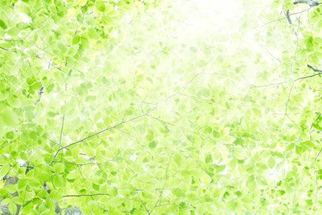 熊本の暮らしやすさをイメージ