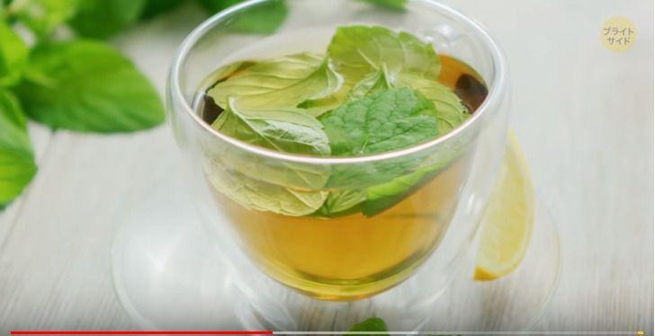 ダイエット 食欲を抑える 緑茶