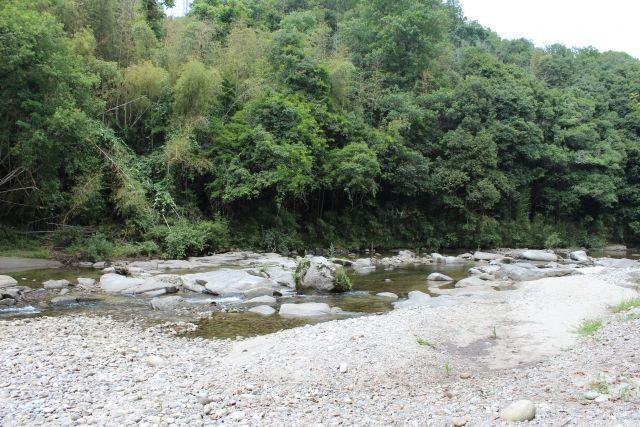 川遊び 注意