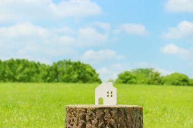 家の模型と野原