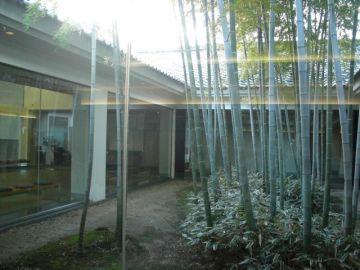 採光性と通風性に優れた中庭のある家とは?メリットとデメリットは?