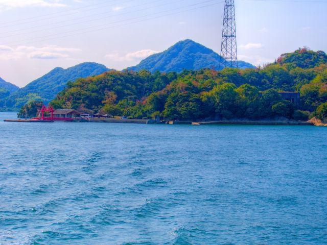 魅力溢れるうさぎ島