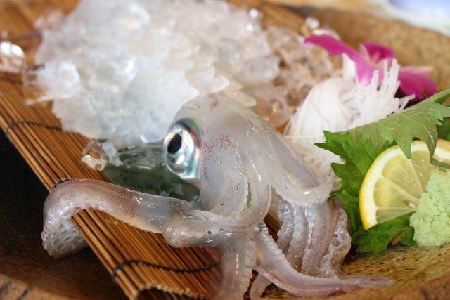 呼子イカの美味しいお店6選