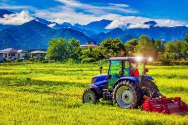 農地転用できない土地・できる土地とは?その違いや有効活用アイデアを解説