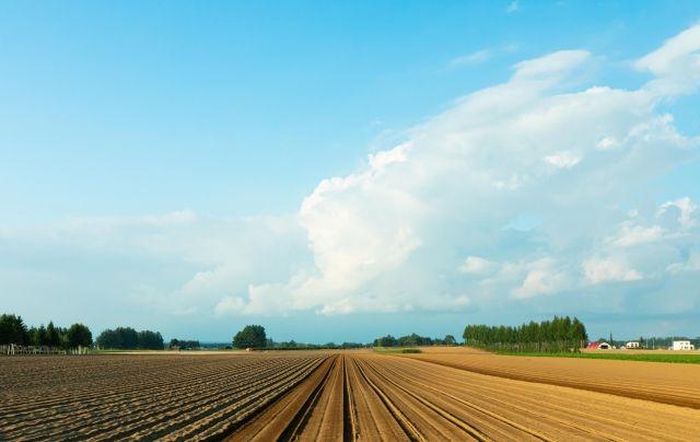 農地は売却した方がいい!理由から農地売却の流れや費用までを解説